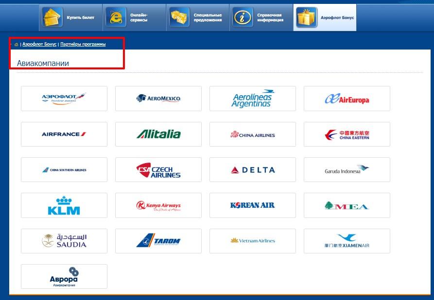 Партнеры – воздушные перевозчики пассажиров альянса «SkyTeam»
